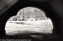 """""""School's canceled!"""": A major snow day in February 2013 in New York brings out the kids and their sleds. Central Park, NY"""